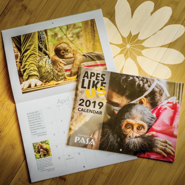 Apes Like Us Calendar