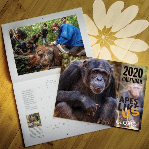 ALU 2020 Calendar