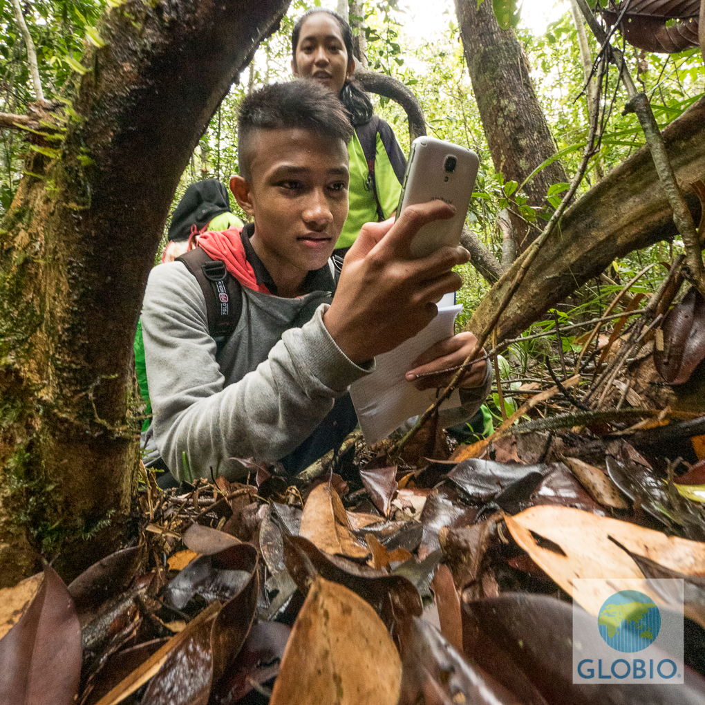 kids exploring outdoors using technology