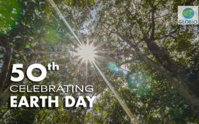 Earth Day Turns Fifty: A Gift of Trees