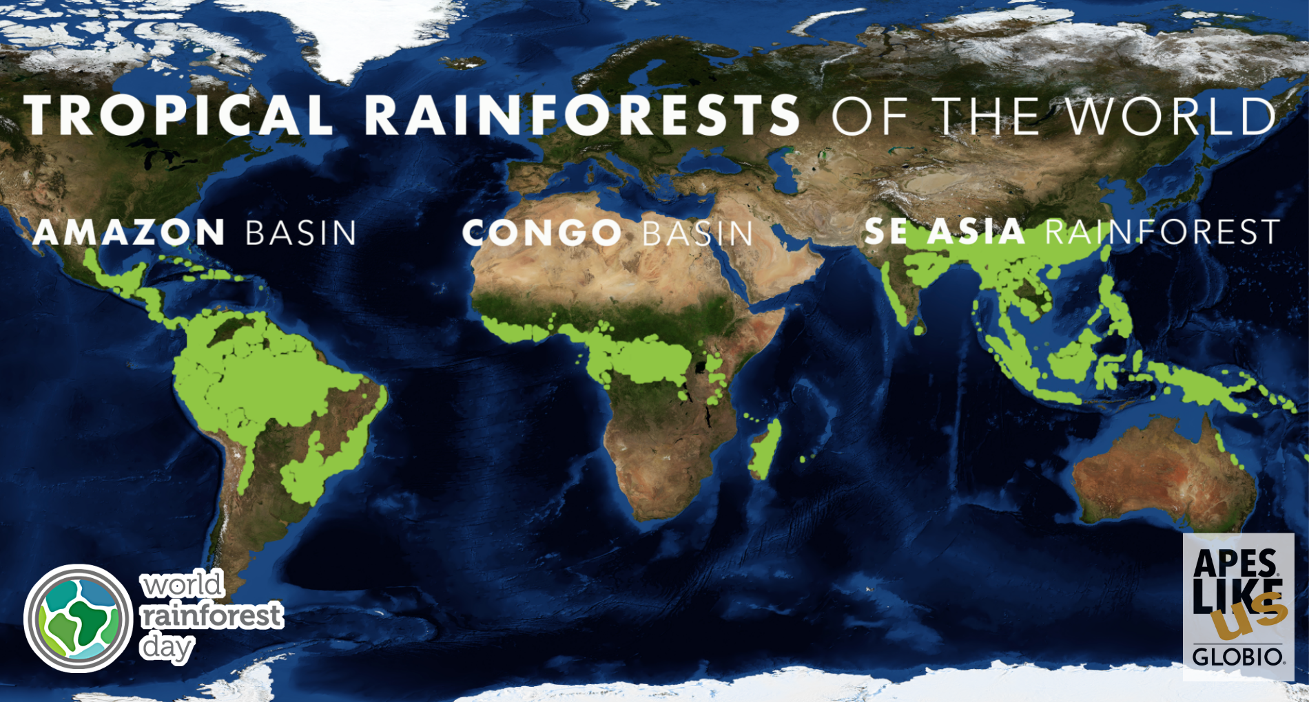 Map of Tropical Rainforest Range around the World