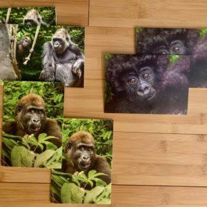 Baby Gorilla Notecards Set