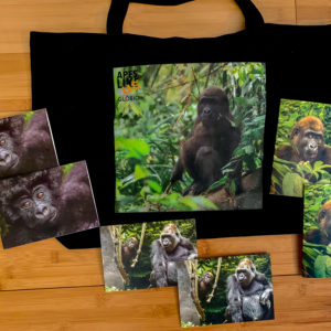 Gorgeous Gorillas Primate Package