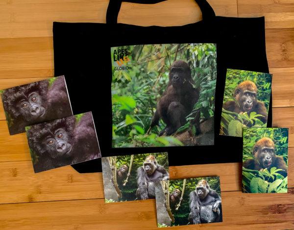 Gorgeous Gorillas Primate Package