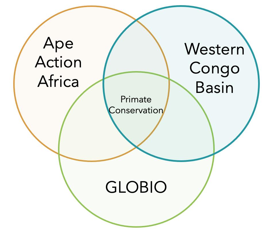 Ape Action Africa GLOBIO Venn Diagram