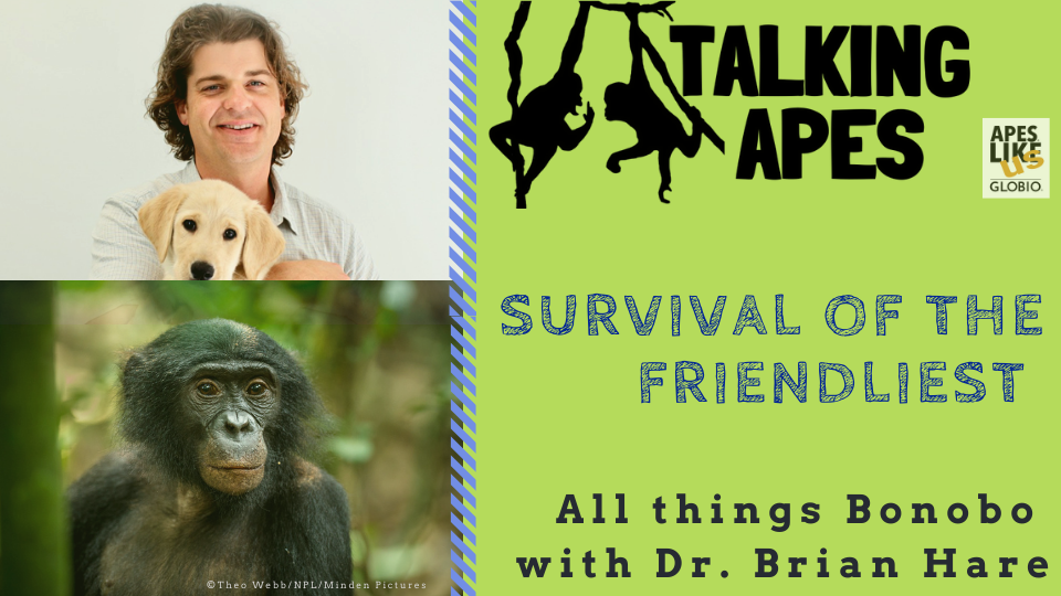 Talking Apes Dr. Brian Hare Promo